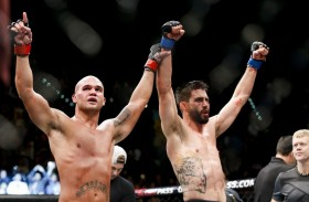 UFC 195: What is Effective Striking?